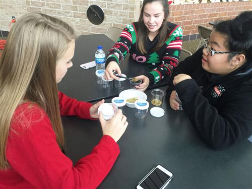 "Shakopee High School students learn from CAPS Healthcare and Medicine students how to build ""calming jars"" and manage stress."